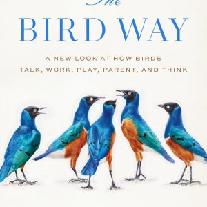 The Bird Way: