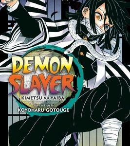 Demon Slayer: Kimetsu No Yaiba, Vol. 19, 19
