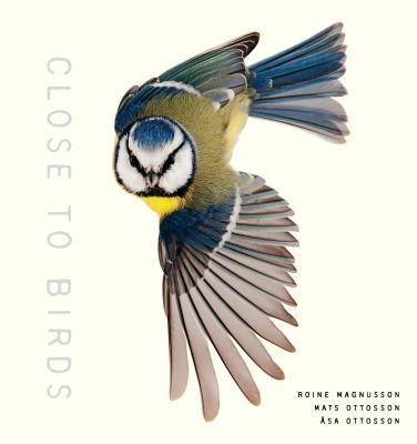 Close to Birds