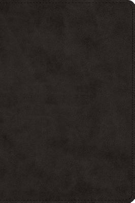 Large Print Bible-ESV