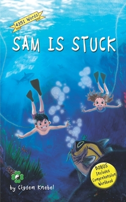 Sam Is Stuck: Decodable Chapter Book