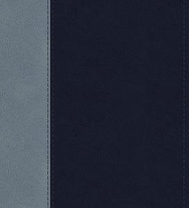 ESV Student Study Bible (Trutone, Navy/Slate, Timeless Design)
