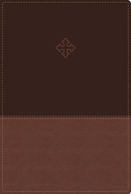 Amplified Study Bible, Imitation Leather, Brown, Indexed